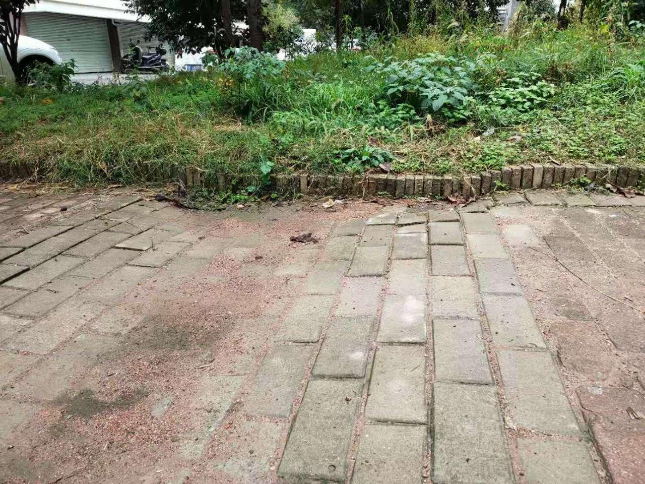 【顺达小区污水管道改造和地面凹陷问题】